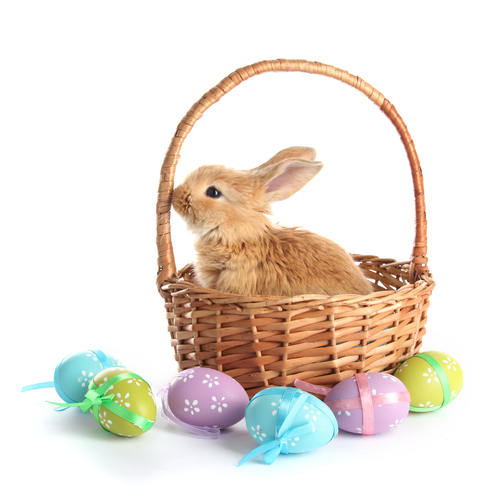 How to Make Your Easter Extra Sweet in Exton